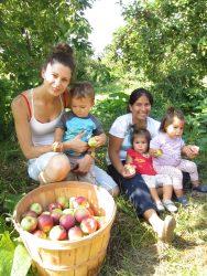 Sortie aux pommes 2015